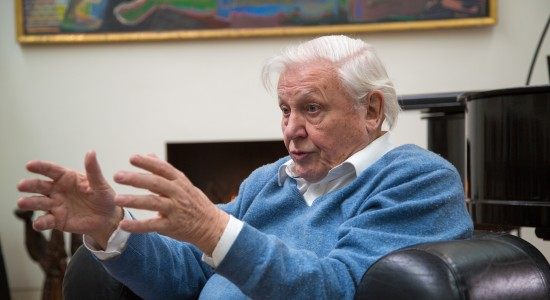 Happy Birthday Sir David Attenborough