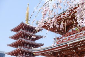 Travel Guide: The Best of Japan